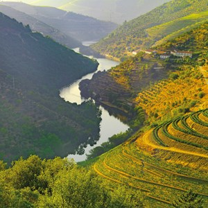 Country Roads of Portugal Guided Tour