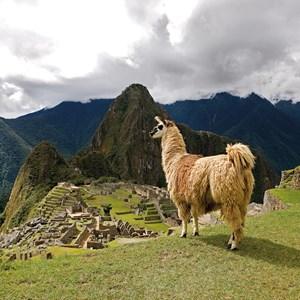 Peru with Machu Picchu and Nazca Lines Guided Tour